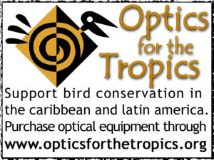 Optics for the Tropics