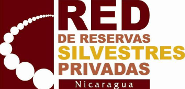 Red-RSP