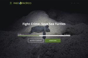 Fight Crime, Save Sea Turtles Screenshot