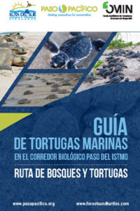 Cover of Guide to SEa Turtles of the Paso del Istmo